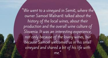 Warm Welcome to Semič Vineyard