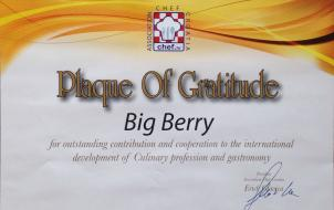 BIG BERRY achievements Masterchef Gratitude Certificate 2017 BBchef