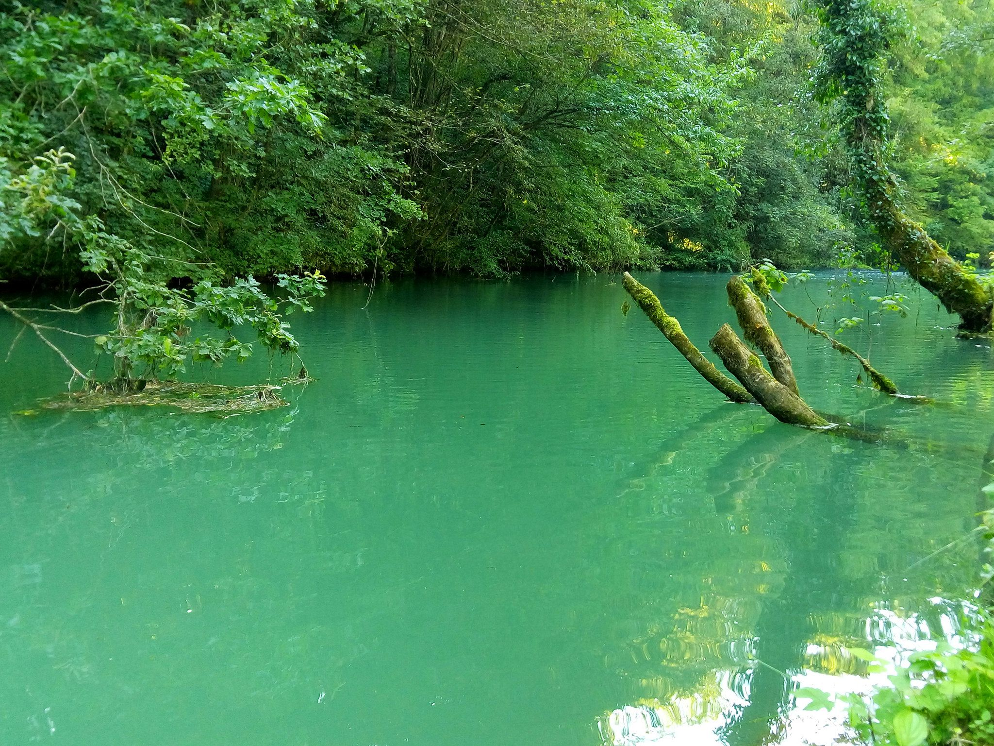 Kolpa river green water